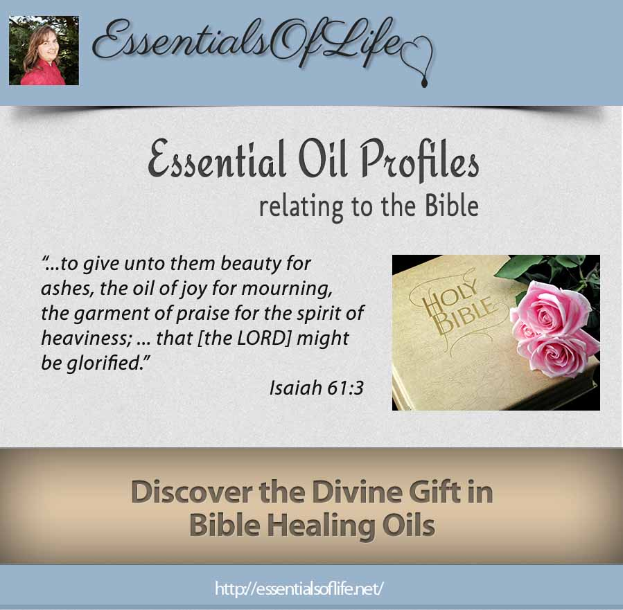 introduction to bible healing oils