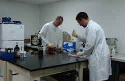 Young Living lab